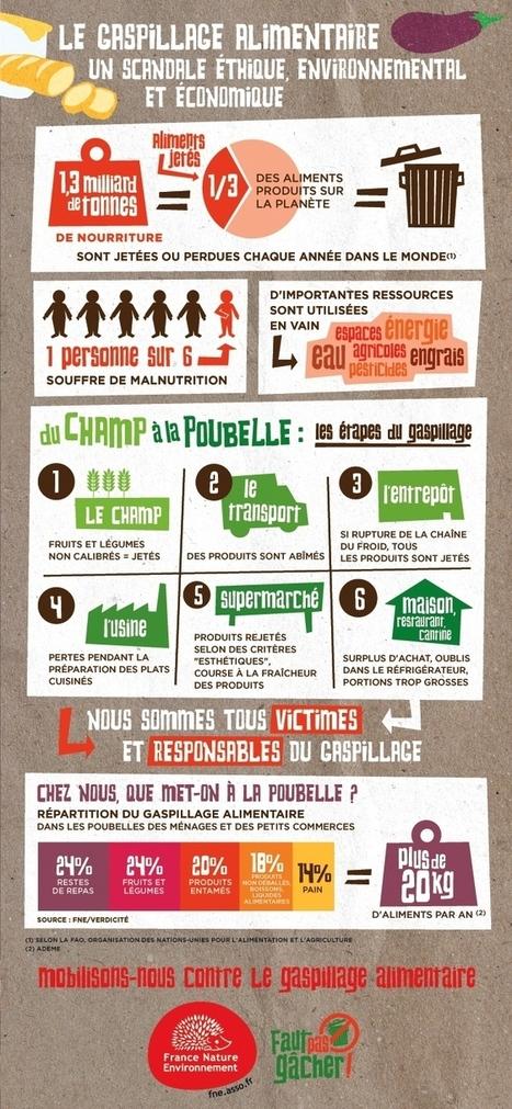 Gaspillage alimentaire : une infographie France nature environnement | Communication, relations publics | Scoop.it