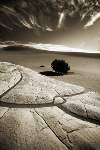 27 Powerful Black and White Photos of the Desert | Everything Photographic | Scoop.it