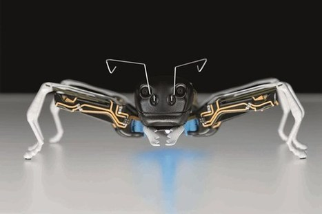 Our future workforce: 3D-printed bionic ants (Wired UK) | weekly innovations | Scoop.it