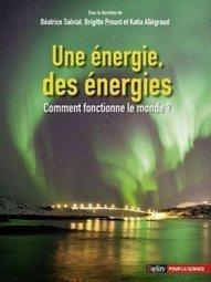 Une énergie, des énergies, passionnant ouvrage scientifique - L'Elephant la revue   Philosophie & ART   Scoop.it