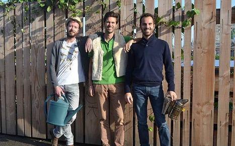 Du mouton à l'abeille : 3 français lancent leurs projets pour responsabiliser les entreprises   Damien CADOUX   Scoop.it