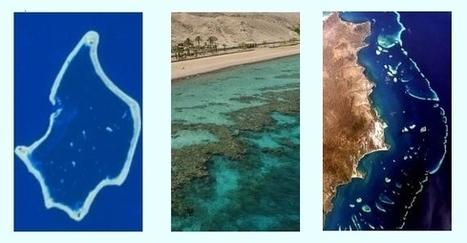 Types of Coral Reefs: Atolls, Barrier Reefs, Fringing Reefs   Y7 Planet Under Pressure   Scoop.it