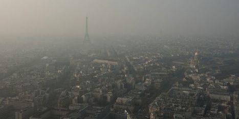 L'étude santé du jour: la pollution rend les allergènes plus puissants | Toxique, soyons vigilant ! | Scoop.it