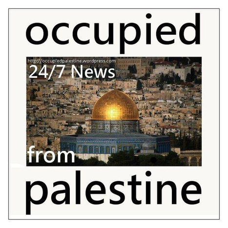 #Palestine News | Oct 5, 2013 | Occupied Palestine | Scoop.it