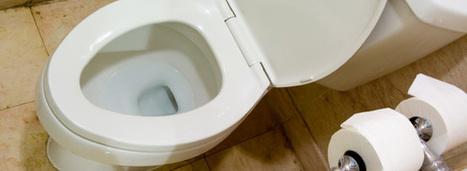 Eaux grises : une utilisation domestique sous conditions | AgroParisTech Eau | Scoop.it