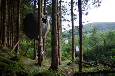 tree tents by luminair   Fun!   Scoop.it