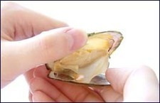 Freshwater Cultured Pearls Jewelry | Faishan & Shopping Jewelry STORES | Scoop.it