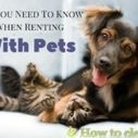 How to Avoid Troubles When You Have a Pet and Live in a Rented Apartment | House cleaning | Scoop.it