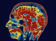 Can Neuroscience Predict Human Behavior? | Cognitive Psychology. Cognitive and behavioural Neuroscience | Scoop.it