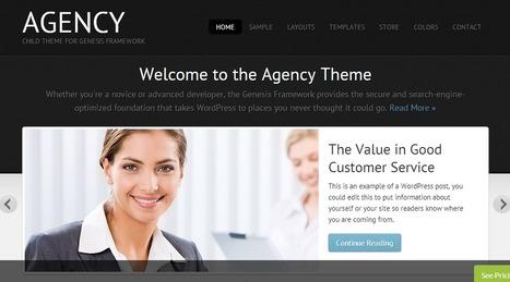 Agency Theme by StudioPress | Wordpress Themes | Scoop.it
