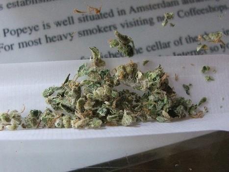Eternel débat: pour ou contre la légalisation du cannabis? - Rue89 | La légalisation du cannabis a travers le monde | Scoop.it