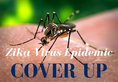 What is the Zika Virus Epidemic Covering Up? - Page 2 | GreenMedInfo | IELTS, ESP, EAP and CALL | Scoop.it
