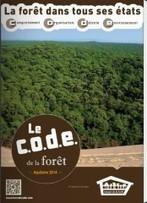 « La forêt dans tous ses états » : La Maison écocitoyenne | Ecotourisme Landes de Gascogne | Scoop.it