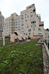 Green Roofs in Big Cities Bring Relief From Above - NYTimes.com | Vertical Farm - Food Factory | Scoop.it