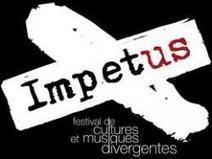 Festival des musiques et cultures divergentes - info-culture.com | Noise rock | Scoop.it
