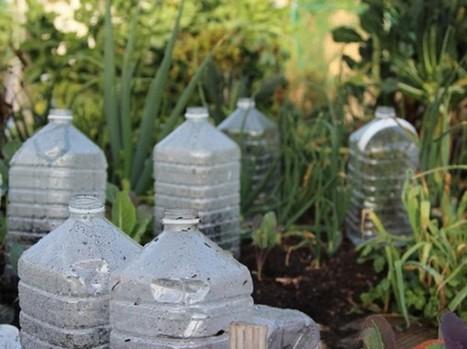 Mini invernaderos hechos con envases plásticos | Agroindustria Sostenible | Scoop.it
