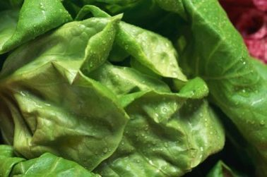 FDA: Dole Recalls Bagged Salads for 'Possible Health Risk"