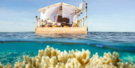 Je kan een nachtje #slapen boven het grootste #koraalrif ter wereld, doe mee met de wedstrijd #Airbnb | Logeren bij Nederlanders | Scoop.it
