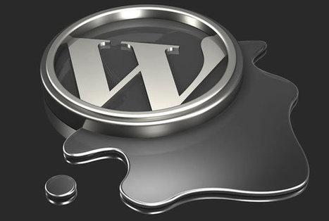 Instalar y gestionar un sitio web con WordPress | Batiburrillo.net | Scoop.it