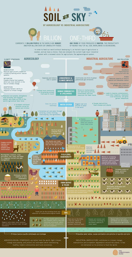 Feeding the World Sustainably: Agroecology vs. Industrial Agriculture | Sustainable Urban Agriculture | Scoop.it
