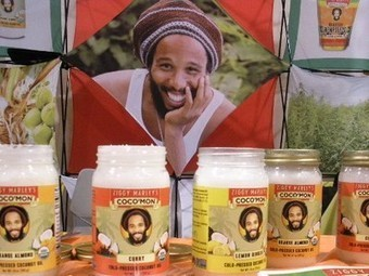 Seeds and Coconuts Bring Dozens of New, Unexpected Products to Expo West 2012 | Vertical Farm - Food Factory | Scoop.it