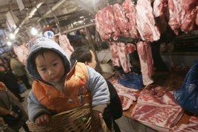 Australia working to resolve China beef suspension - ABC Online   Gender Inequality Australia   Scoop.it