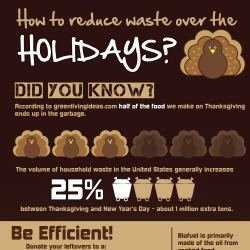 How to Reduce Waste Over the Holidays? | Visual.ly | Infographics for English class | Scoop.it