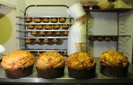È nato prima il panettone o il pandoro? | notizie e post dal blog di giovanni fonghini e da altri siti | Scoop.it