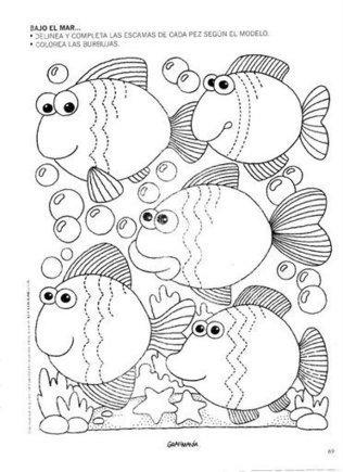Animales Acuaticos | caracteristicas de los animales acuaticos | Scoop.it