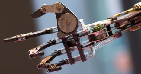 Mind-controlled robotic arm lets users wiggle individual fingers with just a thought | Robots and Robotics | Scoop.it