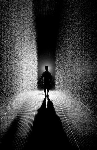 Le MoMA ouvre la saison des pluies | Art et Leadership | Scoop.it