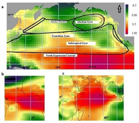 Famine in the Horn of Africa (1984) was caused by El Niño and currents in the Indian Ocean | Sustain Our Earth | Scoop.it