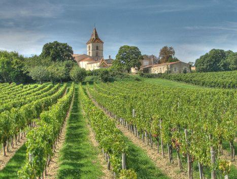 Bordeaux : procès d'une des plus grosses arnaques sur le vin | Le vin quotidien | Scoop.it