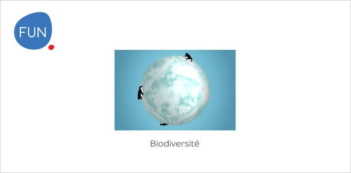 Le MOOC Biodiversité... C'est parti ! | MOOC Francophone | Scoop.it