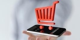 E-commerce : 4 conseils aux PME pour bien vendre en ligne | TIC | Scoop.it