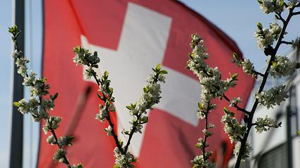 Numerama : La Suisse ne veut pas d' Hadopi et du filtrage dans sa loi | LYFtv - Lyon | Scoop.it