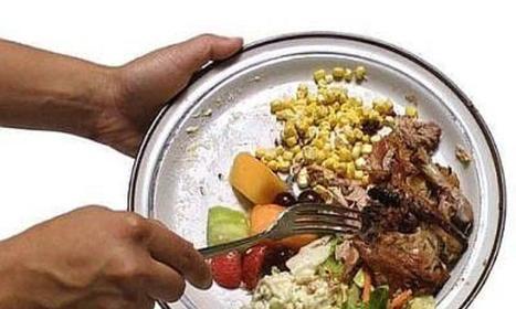 Spreco alimentare, Orlando: in Italia necessario cambiamento | Il mondo che vorrei | Scoop.it