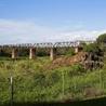Kruger & African Wildlife