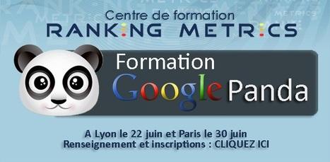 Google Panda 2.2 serait arrivé le 16 juin   Pexiweb   Scoop.it