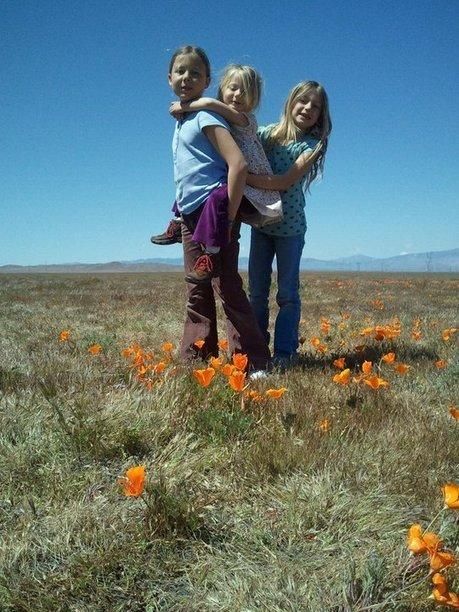 7 trucs pour arrêter de râler sur vos enfants | Conciliation travail-famille | Scoop.it