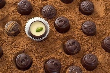 patelpuja's blog: Health Benefits of Cocoa Powder | Dance Academy | Scoop.it