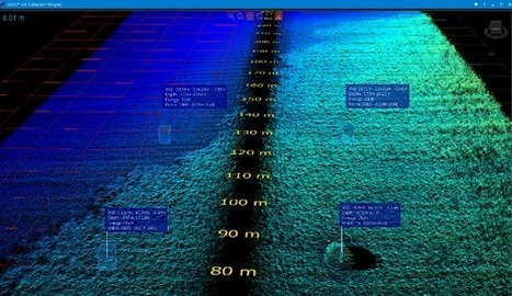 BioSonics and Ping DSP Sonar Technologies Combine for Seagrass Surveys   Marine Technology   Scoop.it