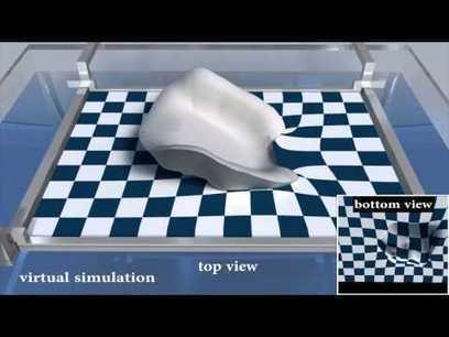 Computational Hydrographic Printing (SIGGRAPH 2015) - Columbia University  // #3Dprint