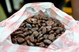 Stop Using Cocoa Grown by Child Laborers - ForceChange.com   Backstabber Watch   Scoop.it