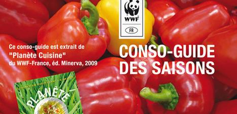 Téléchargez le guide des fruits et légumes de saison | Locavore | Manger Juste & Local | Scoop.it