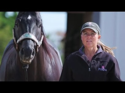 Stories of Greatness: Michele McLeod, Barrel Racing | Purina Animal Nutrition | Health And Fitness | Scoop.it