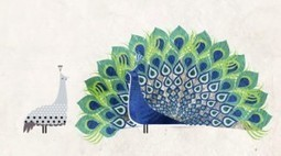 """A Miraculous """"Accident of Physics"""": Carl Zimmer Explains How Feathers Evolved, Animated   Physics is at school   Scoop.it"""