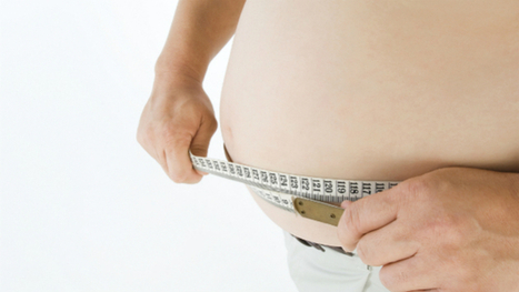 The Answer to the Obesity Problem Might Be in the Bugs in Our Stomachs | Leaky Gut Syndrome | Scoop.it