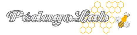 [Evénement] PédagoLab : les ingénieurs pédagogiques en mode contributif | Veille TICE Paris Descartes | Scoop.it