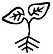 Incredible Edible : des légumes en libre-service | Courts-Circuits.Com | Scoop.it